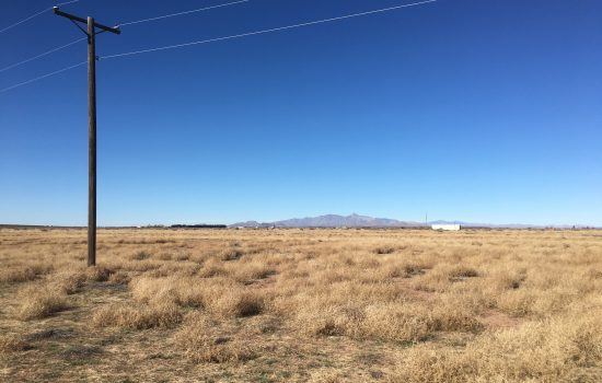 1.05 Acres of Freedom in Luna County, NM
