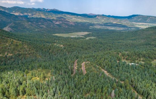 4.5 Acres Of Trees in Beulah Valley